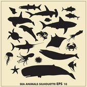 Sea animals silhouette