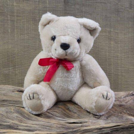 Old shabby chic teddy bear