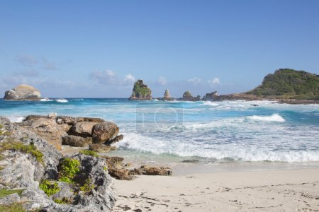 Coast in the caribean - Guadeloupe.