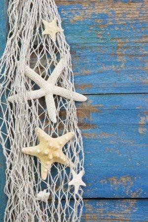 Photo for Blue wooden tropical background with starfish - maritime decoration. - Royalty Free Image