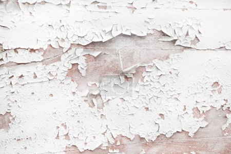 Photo for Shabby chic style or vintage background of white or beige wood. - Royalty Free Image