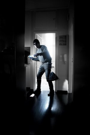 Thief in a house