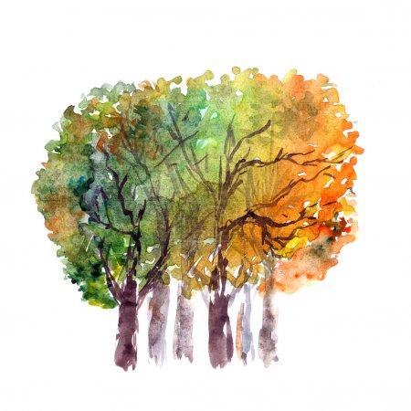 Photo pour Arbres d'automne. Image aquarelle - image libre de droit