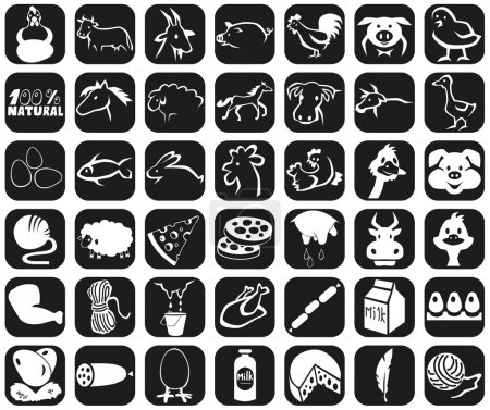 icons animals and products