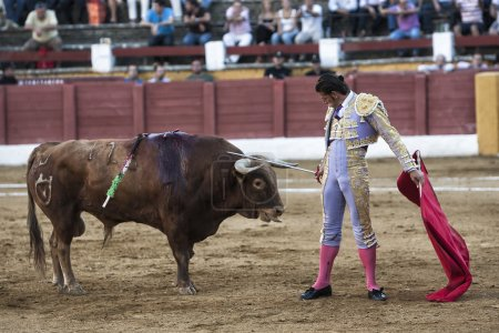 Spainish bullfighter David Valiente placing his sword on the head of the bull in an act of courage in the Bullring of Andujar