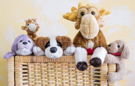 Foto de Divertidos juguetes animales diferentes - Imagen libre de derechos