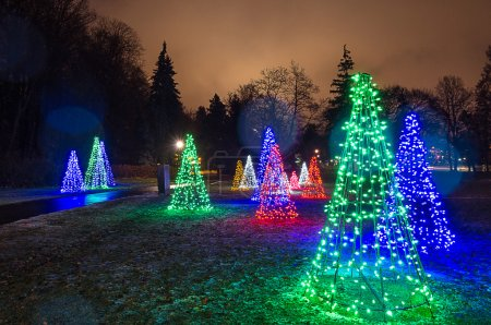 Photo for Light show in a park for christmas - Royalty Free Image