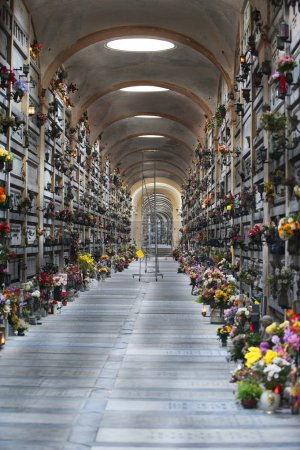 A view of the many corridors of the cemetery Stagl...