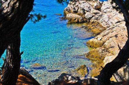 Sustipanac island near Pirovac Croatia