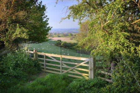 Photo pour Vue sur la ferme vers la campagne assez anglais, cotswolds, Angleterre. - image libre de droit