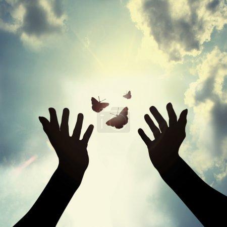 Photo pour Main avec papillon dans le ciel signifie donner la paix - image libre de droit