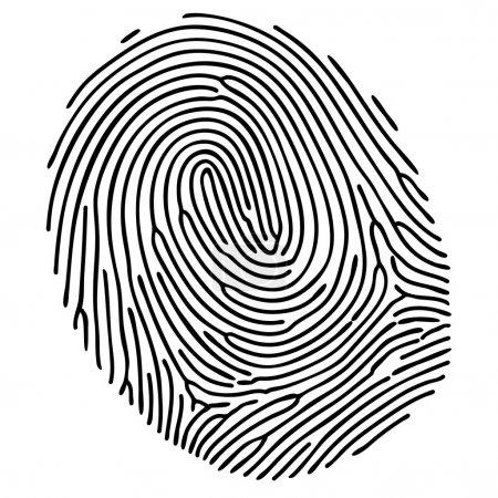 Vector black fingerprint on white background
