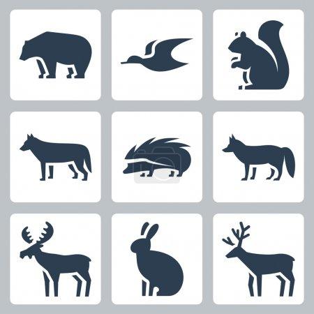 Illustration pour Ensemble d'icônes animaux de forêt vectorielle - image libre de droit