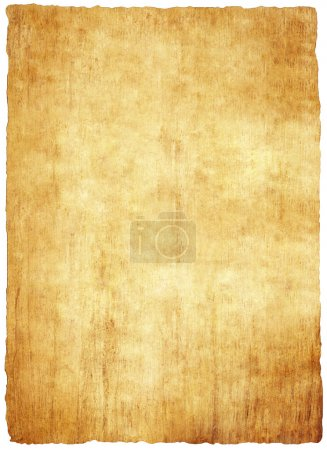 Bright papyrus paper texture