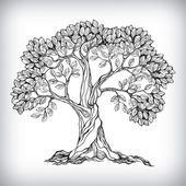Hand drawn tree symbol isolated vector illustration