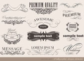 Old style frames and labels Retro floral ornaments Vintage borders and other elements