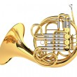 Double French Horn isolated...