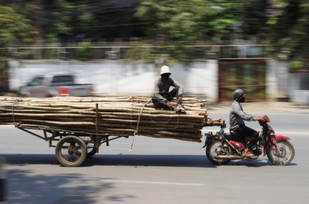 Oversized timber transport by motorbike