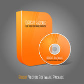 Bright realistic orange isolated DVD CD Blue-Ray smooth shaped case with DVD CD disk on grey background With place for your text and pictures Vector