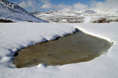 Brown lake in the middle of the snow in Asturias, Spain.
