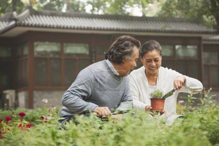 Photo pour Couple de personnes âgées souriant dans le jardin - image libre de droit