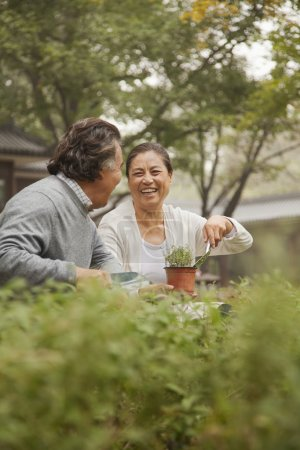 Photo for Smiling senior couple in garden - Royalty Free Image