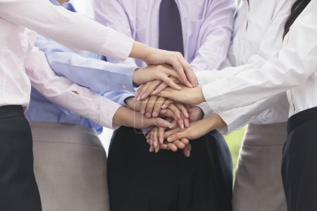 Arm and hands of group of business people