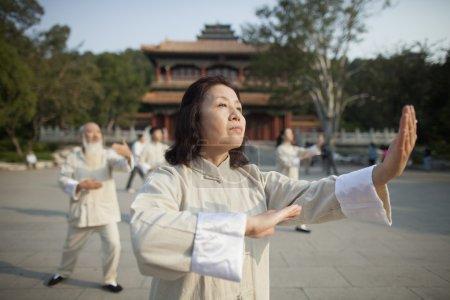 Photo for Chinese Practicing Tai Ji - Royalty Free Image