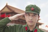 Soldier Saluting