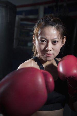 Photo pour Portrait de boxeuse déterminée en position de combat regardant la caméra - image libre de droit