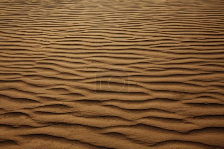 Background of sand dunes