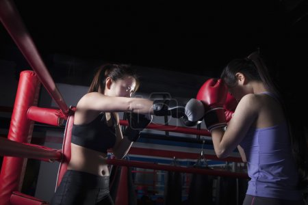 Female boxers boxing in the