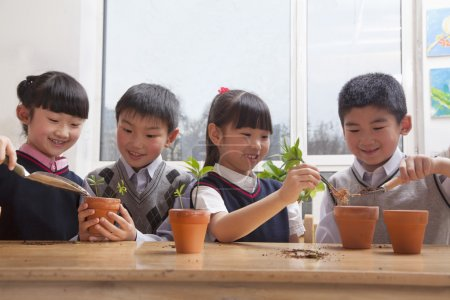 Photo for Schoolchildren planting plants into flowerpots in the classroom - Royalty Free Image