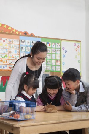 Schoolchildren and teacher playing with pet rabbit in the classroom