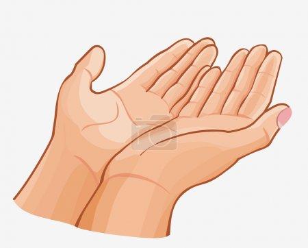 Illustration pour Mains douces attentionnées tenant quelque chose de précieux - image libre de droit