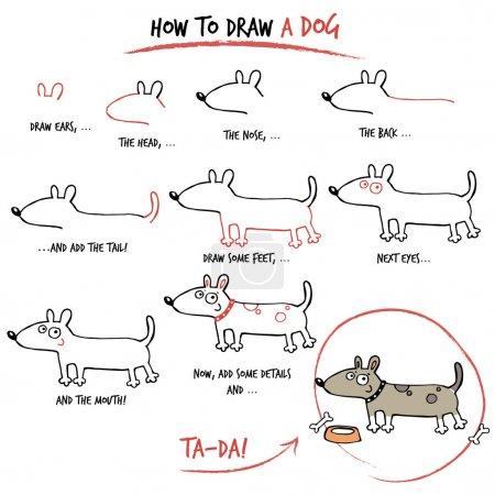 Illustration pour Tutoriel de dessin. Comment dessiner un chien. Pas à pas . - image libre de droit