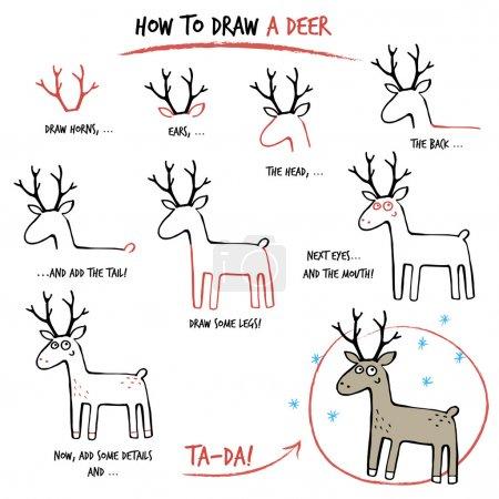 Illustration pour Tutoriel de dessin. Comment dessiner un cerf. Pas à pas . - image libre de droit