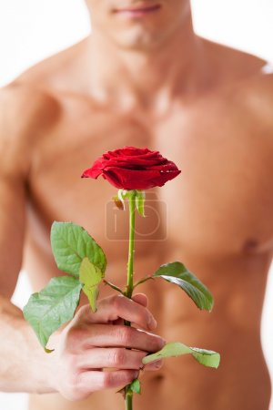 Muscular man with rose