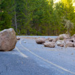 This national forest road is blocked by a land sli...