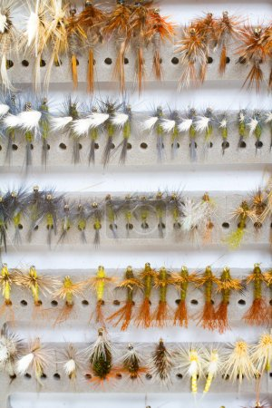 Fly Box Detail Dry Flies