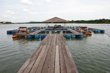 Fish farm located in thai country
