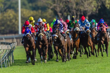 Photo for Horse Racing jockeys riding focusing on the race pace on last quarter mile or four hundred meters of action. - Royalty Free Image