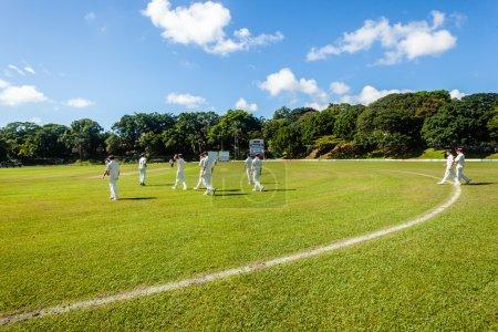 Cricket Game Grounds Players Batsmen