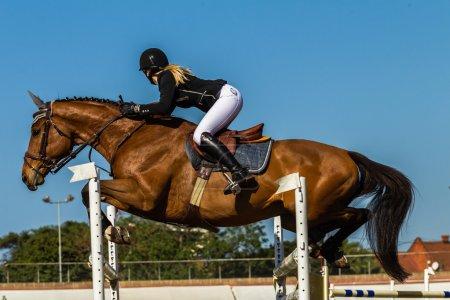Photo pour Équestre cheval national sautant vol de cavalier et cheval femme par-dessus les poteaux de la porte. - image libre de droit
