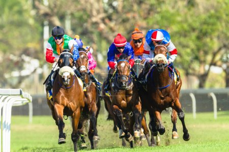 Photo for Horse racing jockeys close-up action of races at Greyville race course grass track for Durban July. - Royalty Free Image