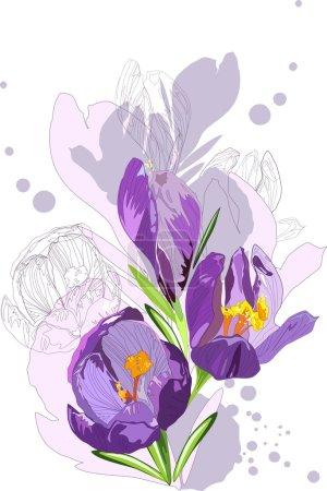 Sketch of a spring flowers violet colors