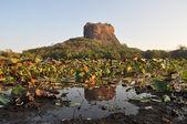 Sigiriya Lev skalní pevnost na Srí Lance