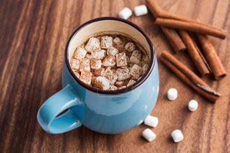 Hot chocolate with mini marshmallow and cinnamon