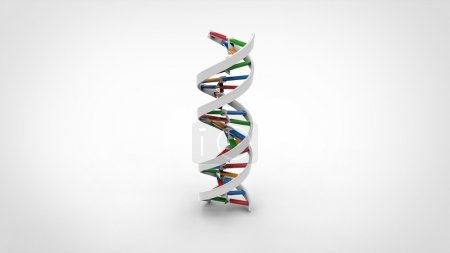 Photo for DNA molecule colour-coded. - Royalty Free Image