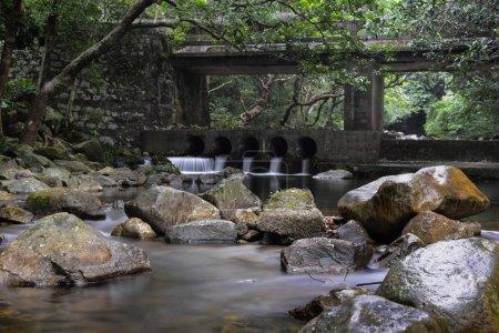 Rivulet and stone bridge in Shing Mun Reservoir, Hong Kong